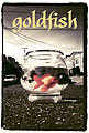 Girl's Goldfish - DVD Skateboarding Snowboarding skateboard snowboard DVD Video Review