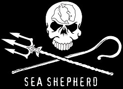 Sea Shepherd jolly roger logo